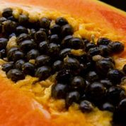 GM papayas a lesson in biotech benefits: Hawaii's biotech papayas teach lesson