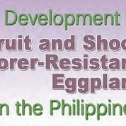 Development of Fruit and Shoot Borer-Resistant (FSBR) Eggplant in the Philippines