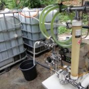 Renewable Biofuels from Microalgae