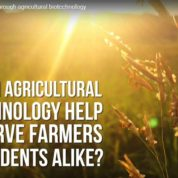 WATCH: Helping farmers through agricultural biotechnology